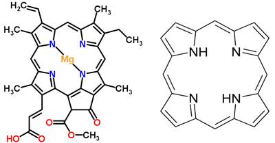 Порфіринова структура хлорофілу